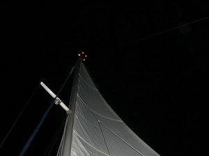 20100717-10.jpg