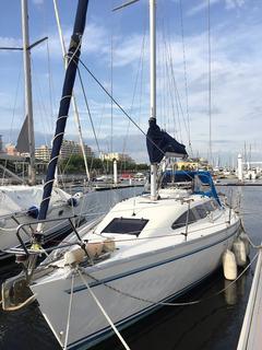 Y31-EX 017.JPG