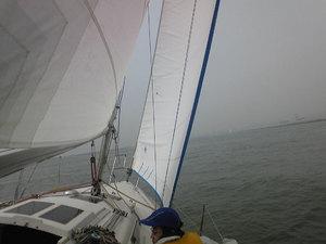 20100328-04.jpg