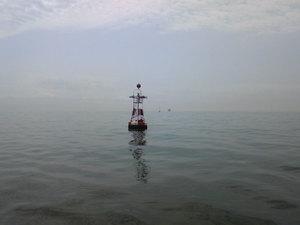 20100411-03.jpg